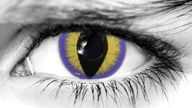 Seducer Purple Halloween Contact Lenses